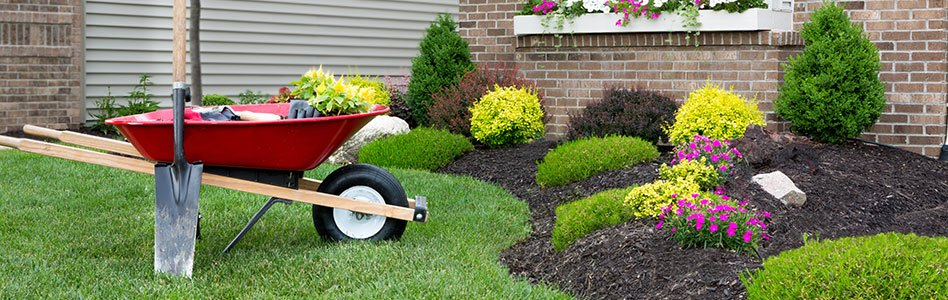 Water Smart Landscape with Red Wheel Barrow