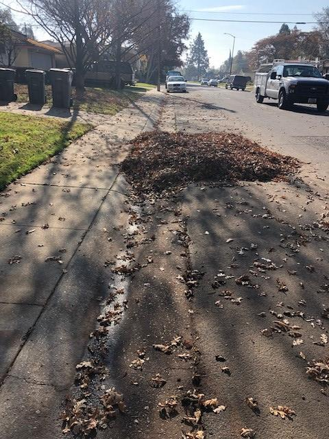 pile of leaves in street by home dec 14th 2018