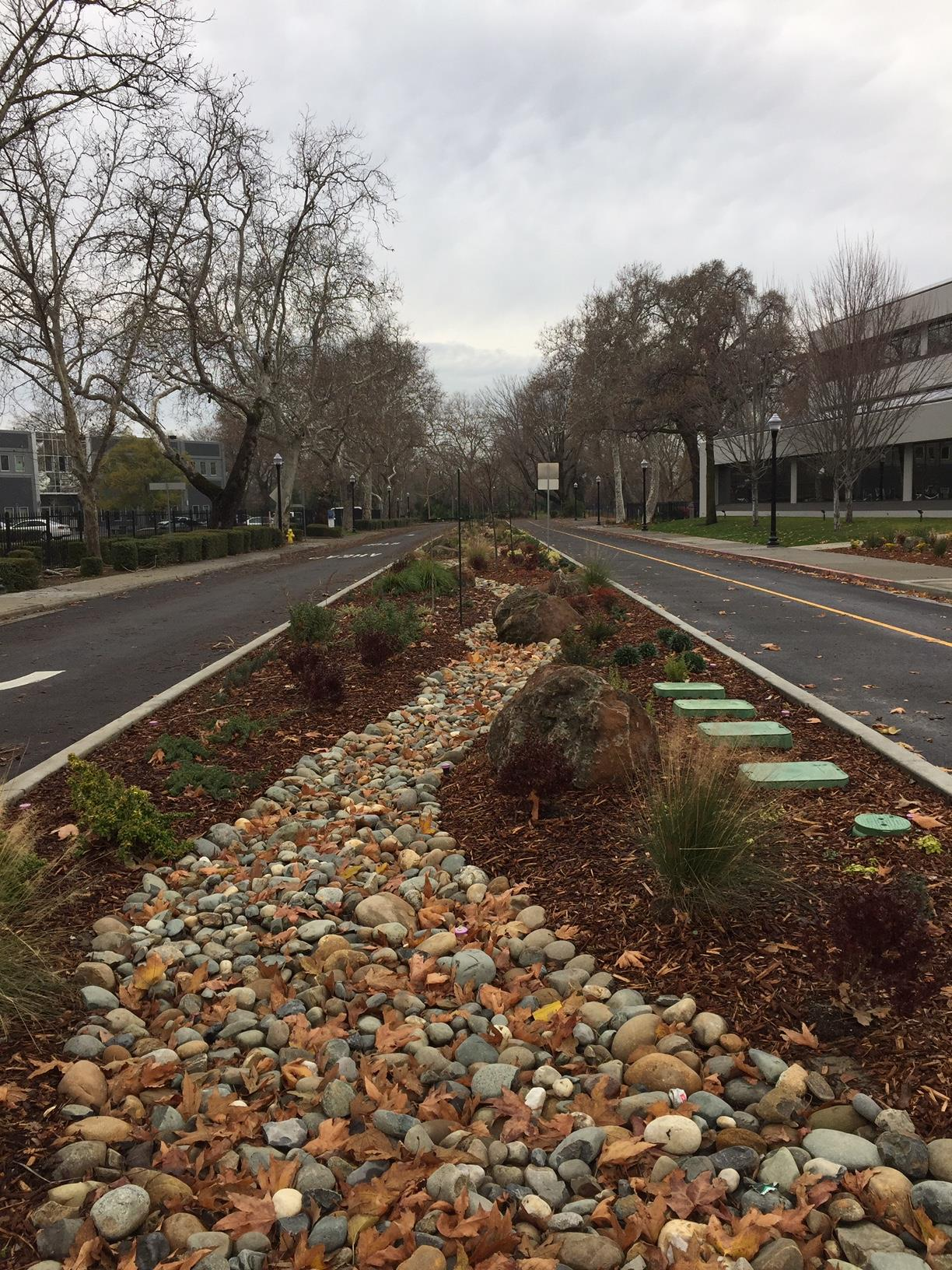 2019-01-08 Gateway rock landscaping in front of Raley's