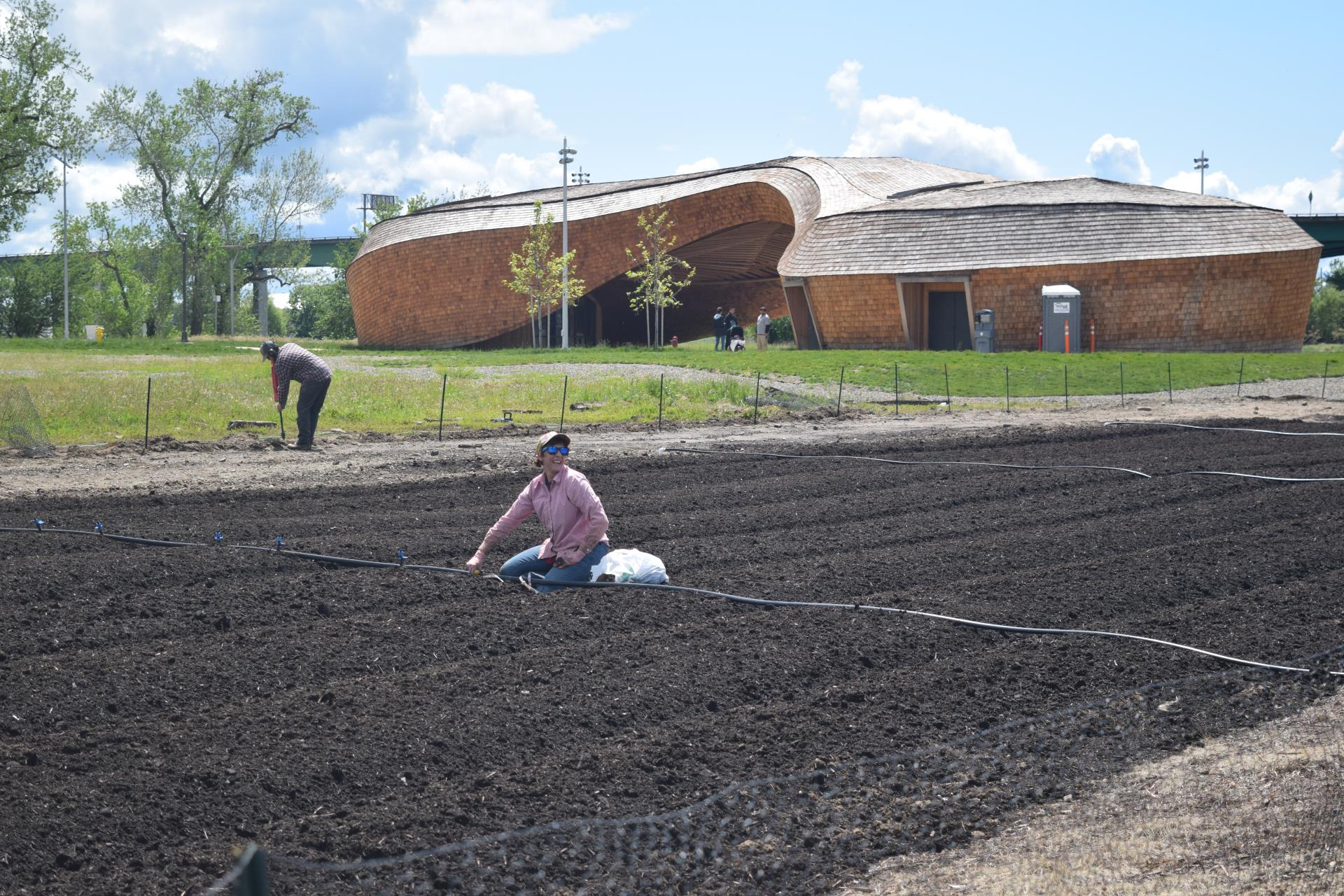 sara bernal planting on Riverfront Far at the Barn