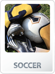 Link to Adult Soccer League Information, Rulebooks, Scheduling Links