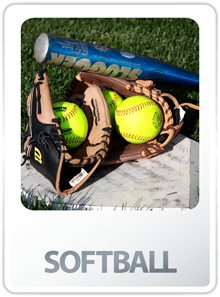 Link to Adult Softball League Information, Rulebooks, Scheduling Links