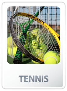 Link to Adult Tennis Lessons Information, Rulebooks, Scheduling Links